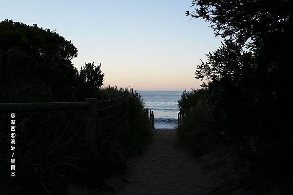 澳洲/VIC大洋路