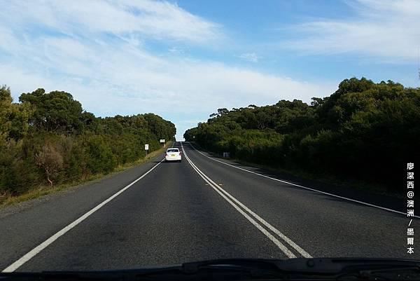 澳洲/大洋路週邊風景