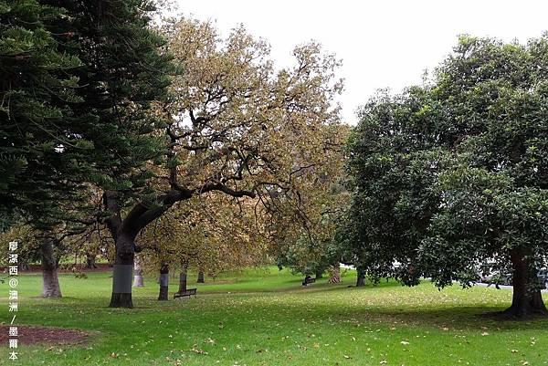 墨爾本/Fitzroy Gardens