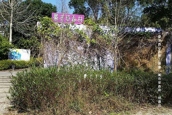 苗栗/薰衣草森林(明德店)