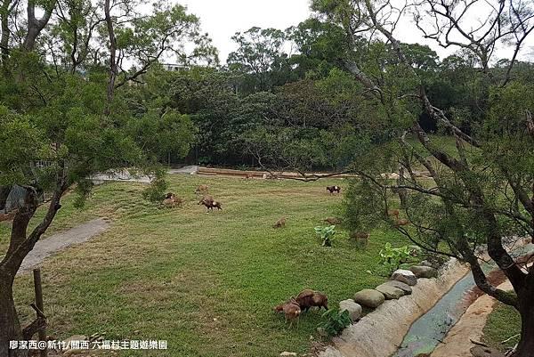 【新竹/關西】六福村主題遊樂園