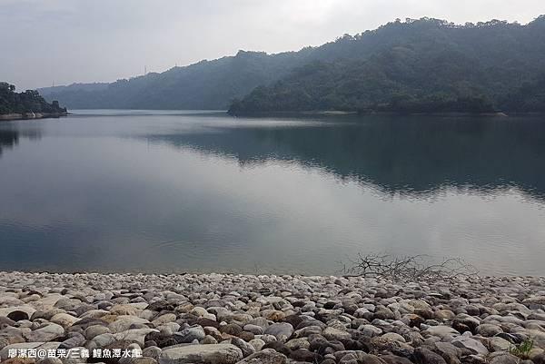 【苗栗/三義】鯉魚潭水庫