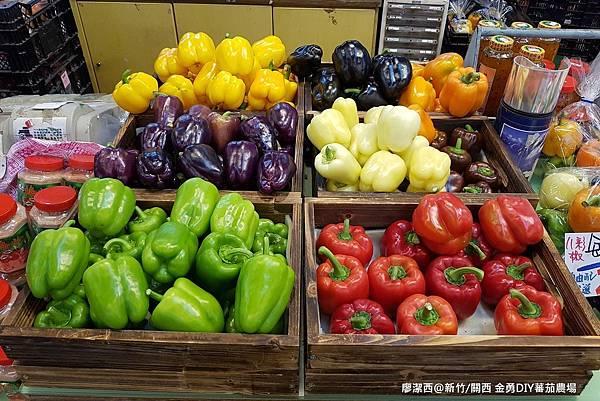 【新竹/關西】金勇DIY蕃茄農場(數訪)