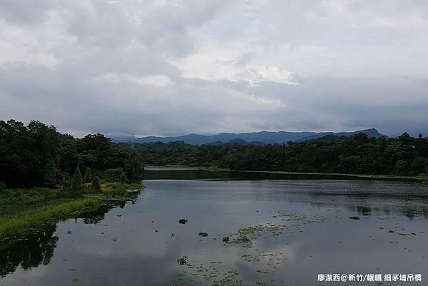 【新竹/峨嵋】細茅埔吊橋