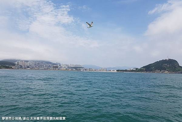 2017/07韓國/釜山 太宗臺景區搭觀光船遊覽