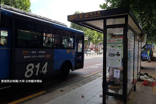 2017/07韓國/大邱 公車峨洋橋站