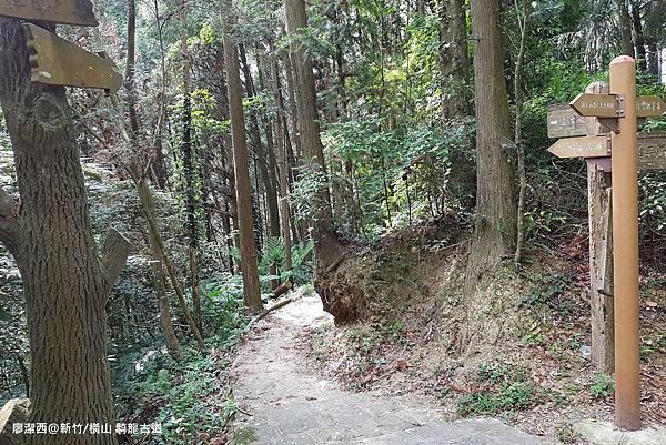 【新竹/橫山】騎龍古道