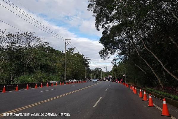 【苗栗/南庄】台3線省道101公里處的水中唯美落羽松