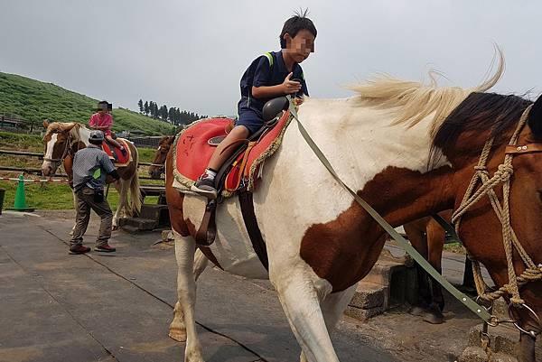 2018/07 九州/熊本 草千里騎馬
