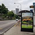2018/08 新加坡 巴士IKEA站