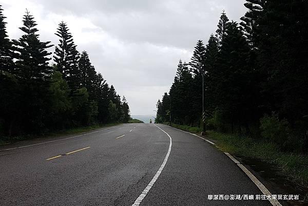 【澎湖/西嶼】前往大菓葉玄武岩