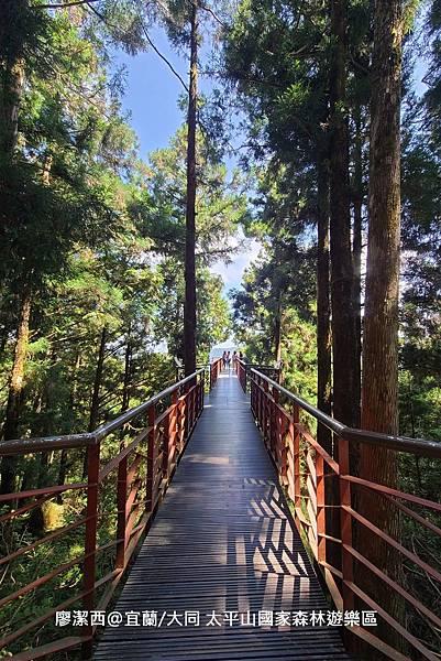 【宜蘭/大同】太平山國家森林遊樂區