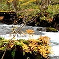 DAY2。奧入瀨溪