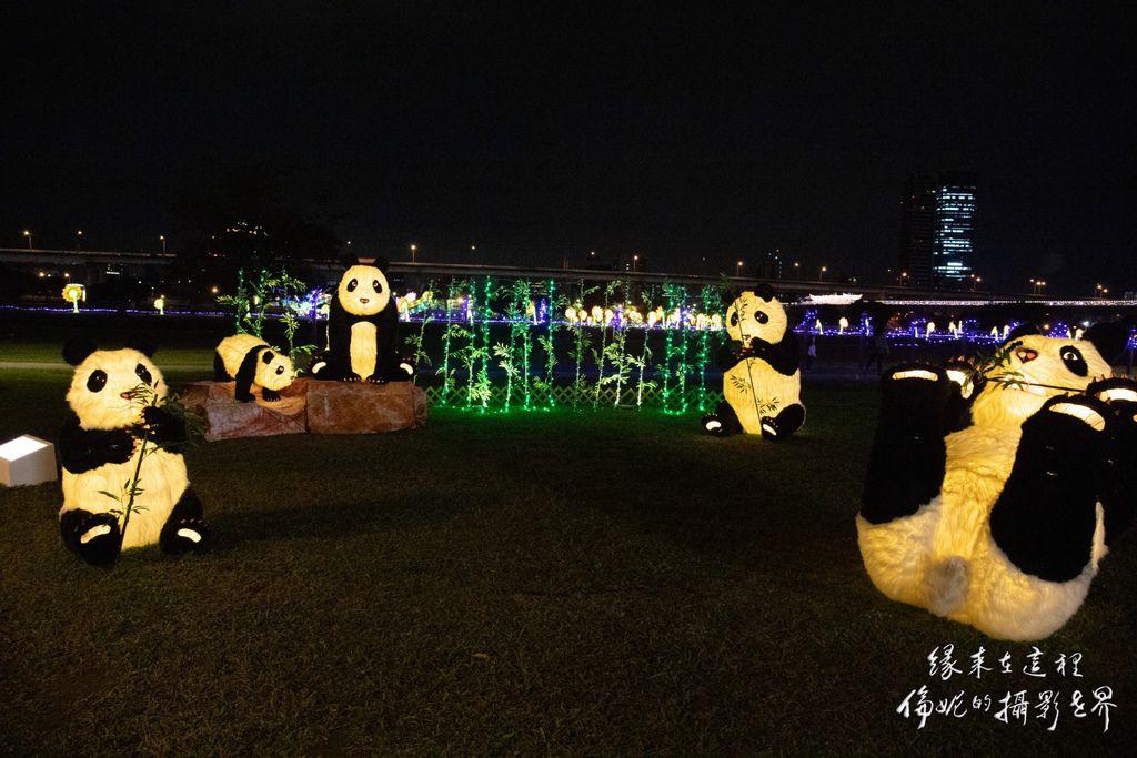 20200206新北燈會_200206_0007.jpg