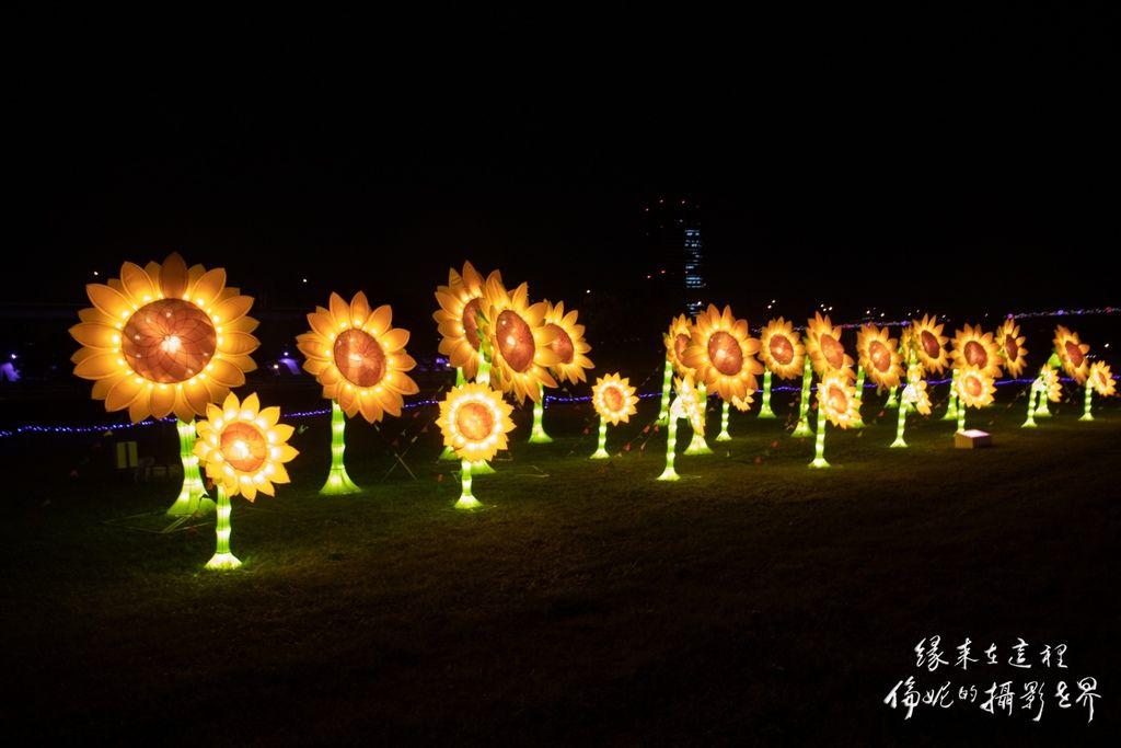 20200206新北燈會_200206_0013.jpg