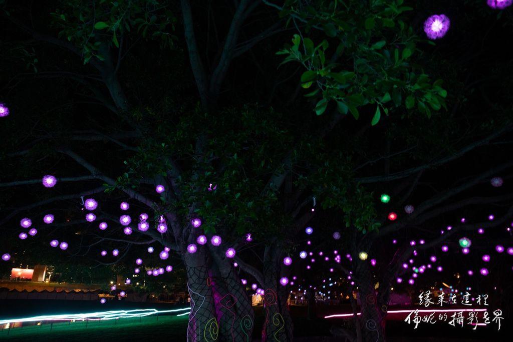 20200206新北燈會_200206_0021.jpg