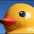 黃色小鴨在桃園7.JPG