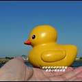 黃色小鴨在桃園16.JPG