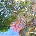 武陵農場65.JPG