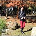 石門水庫楓紅了7.JPG