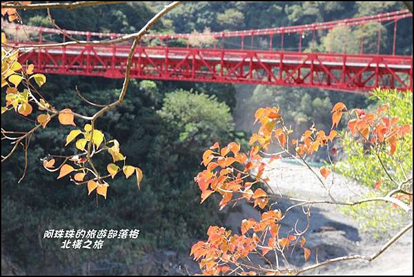 北橫之旅15.JPG