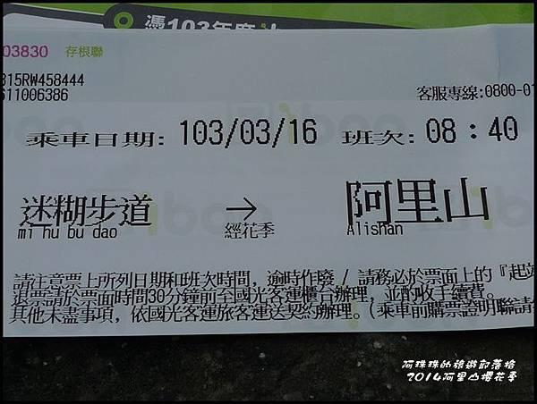 阿里山櫻花季1.JPG