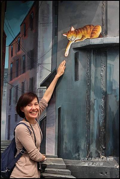 屋頂上的貓4.JPG