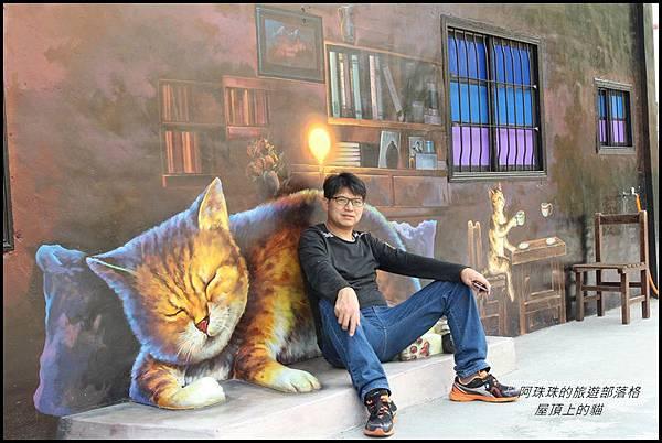 屋頂上的貓13.JPG