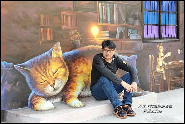 屋頂上的貓14.JPG