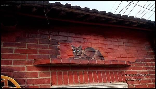 屋頂上的貓24.jpg