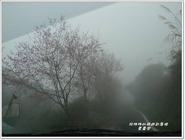 雪霧鬧10.JPG