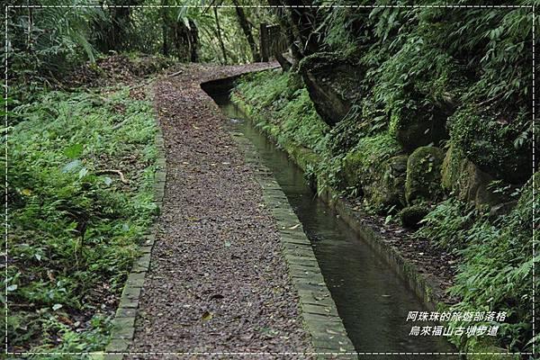 烏來福山古圳步道1.JPG