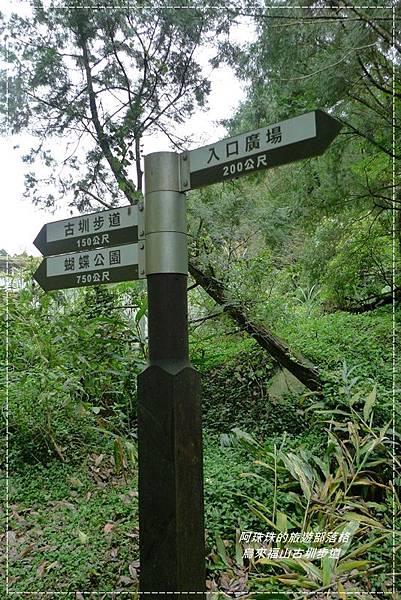 烏來福山古圳步道16.JPG
