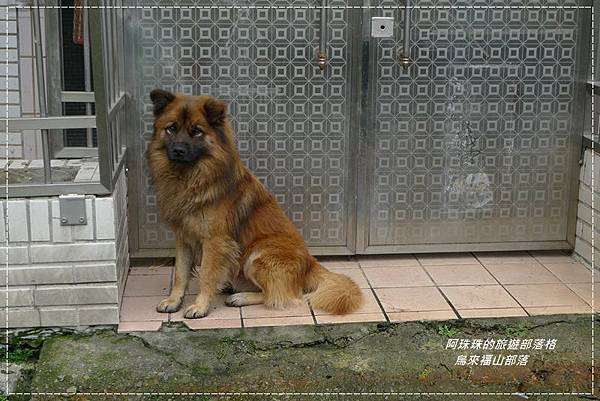 烏來福山部落3.JPG