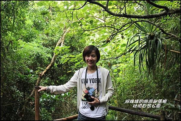 社頂自然公園5.JPG
