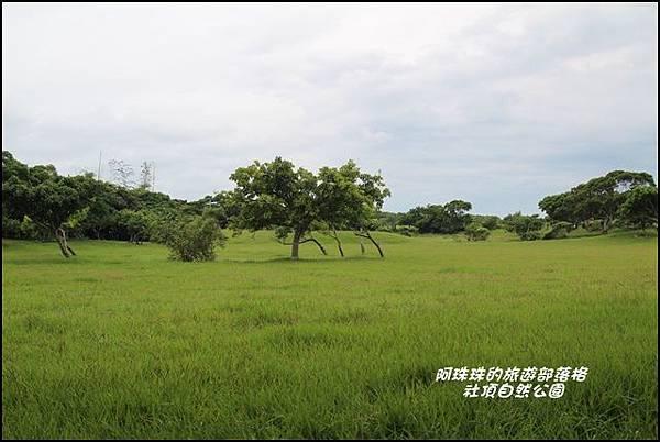 社頂自然公園6.JPG