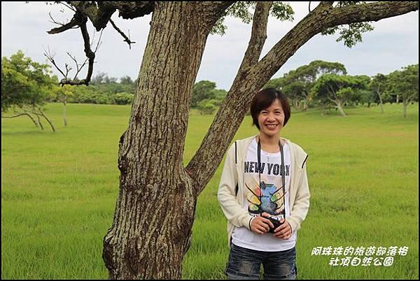 社頂自然公園8.JPG