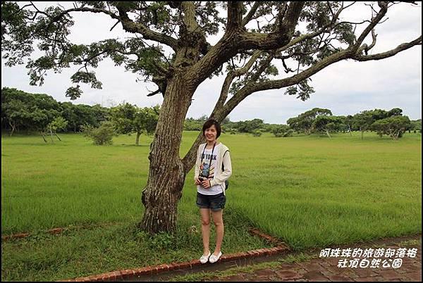 社頂自然公園7.JPG