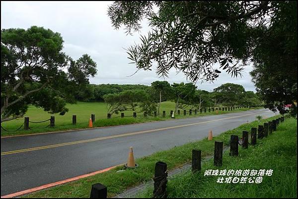 社頂自然公園11.JPG