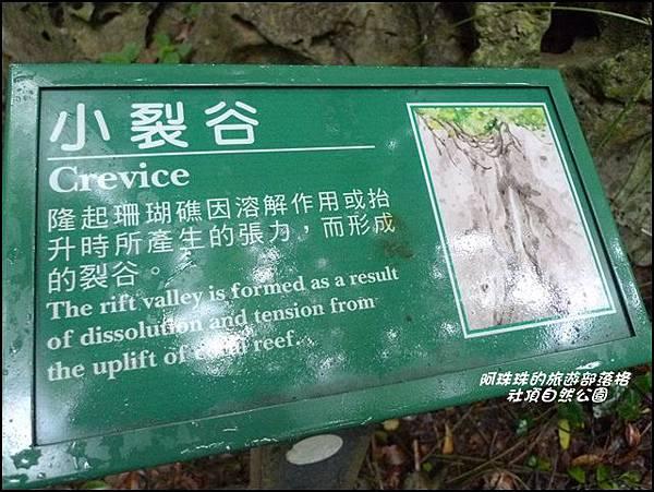 社頂自然公園14.JPG