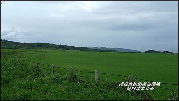 籠仔埔大草原1.JPG