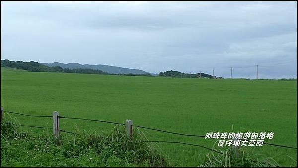 籠仔埔大草原2.JPG