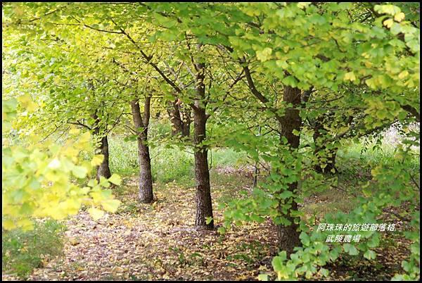 武陵農場12.JPG