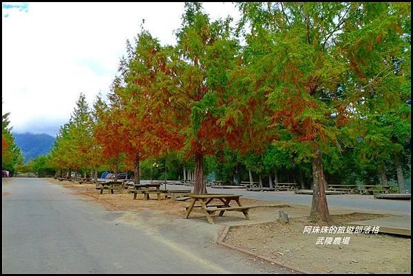 武陵農場86.JPG