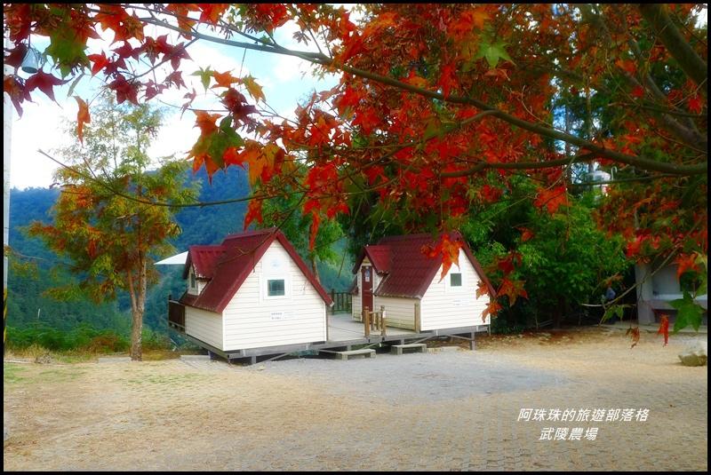 武陵農場95.JPG