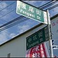 楓樹村花海27.JPG