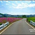 楓樹村花海35.JPG