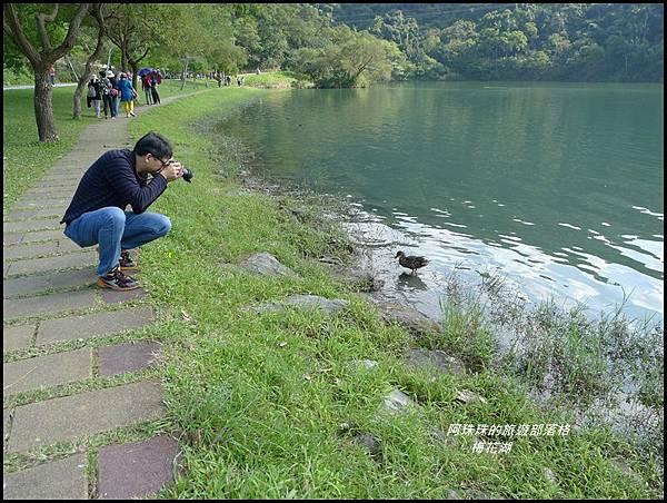 梅花湖28.JPG