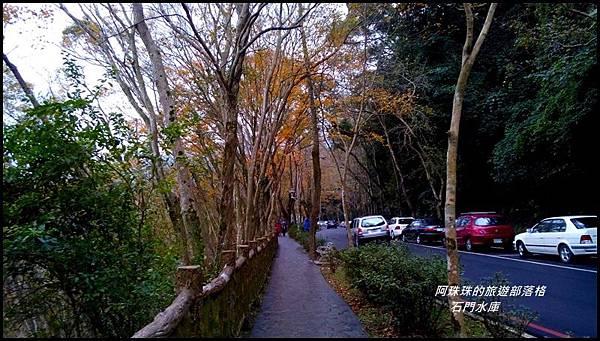 石門水庫楓紅了2.jpg