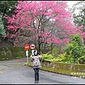 八仙山森林遊樂區1.JPG